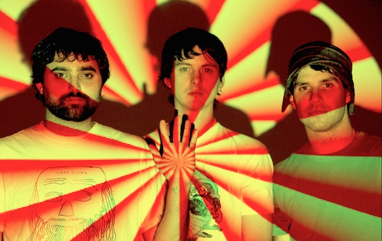 Animal Collective 2008
